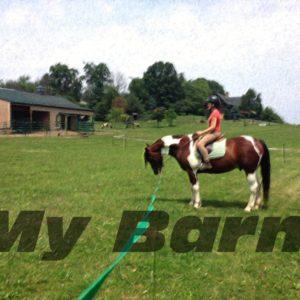 BB-Barn-2-1024x768
