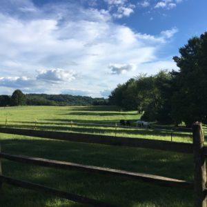 Log Cabin Farm